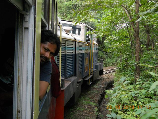 Enjoying Train Ride