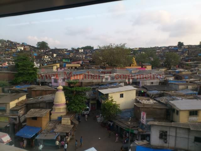 Asalfa Shanties View