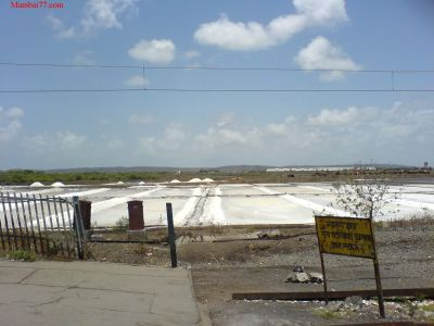 Mira Road Salt Pans