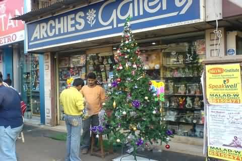 Christmas Trees In Mumbai