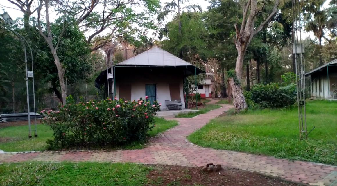 Accommodation Guest House Tents