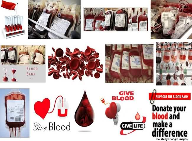 Blood Banks Of Mumbai