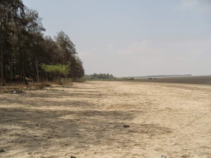 Dahanu Bordi Beaches Seashore