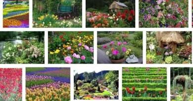 Byculla Zoo Tactile Garden