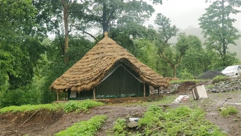 Castra Vandri Road Camping