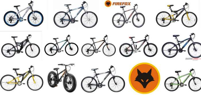 Cycle Brands