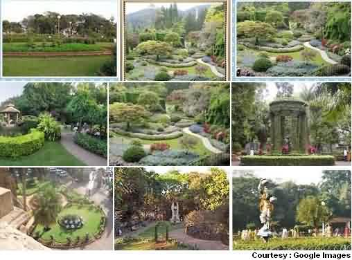 Gardens and Parks