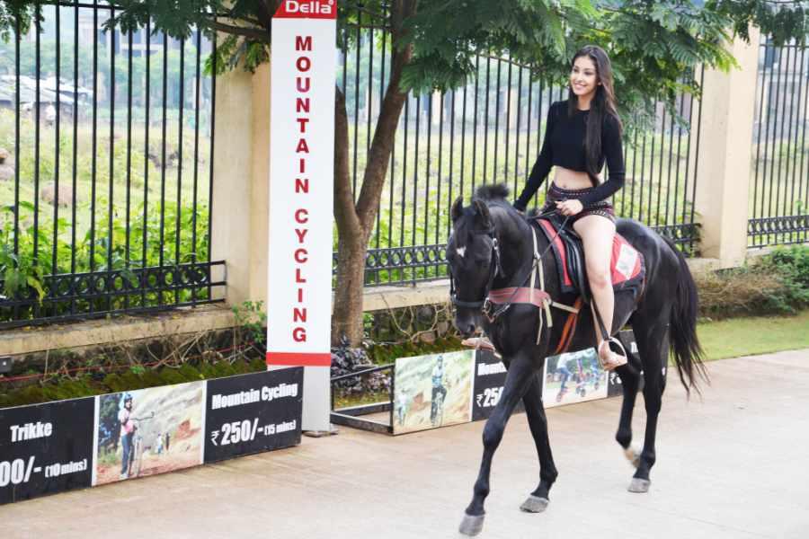 Horse & Pony Riding