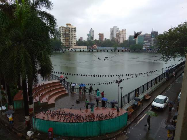 Lake View in Monsoon