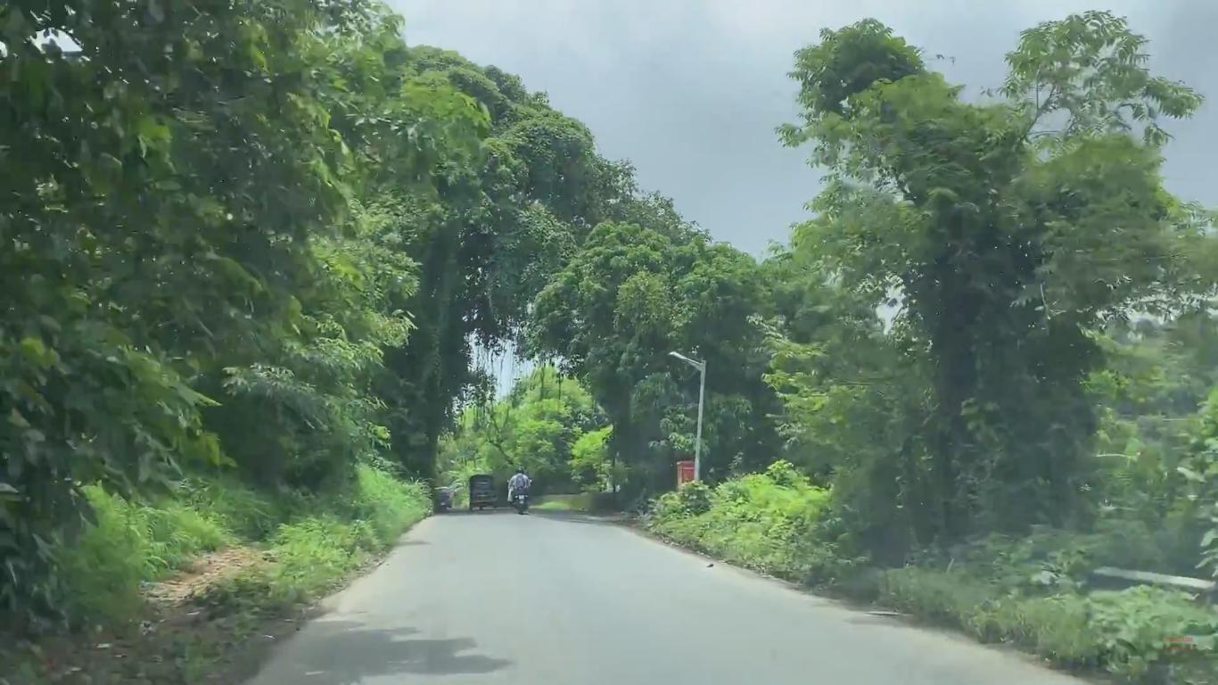 Lush Green Uttan Road Drive