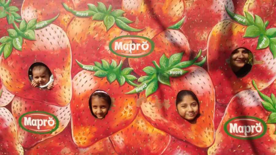 Mapro Garden Panchgani
