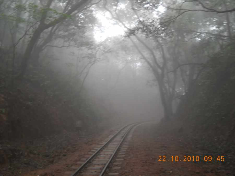 Fog at Matheran