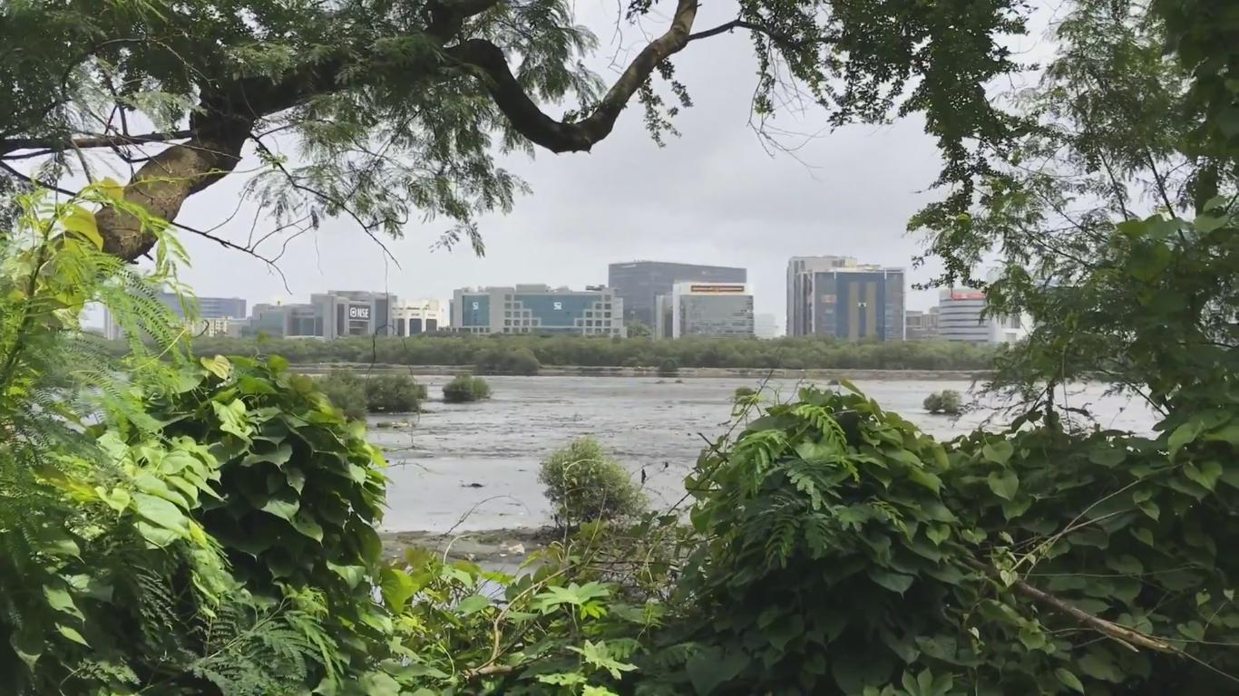 Mithi River BKC View From Nature Park