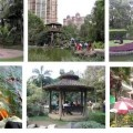 Nirvana Garden at Powai