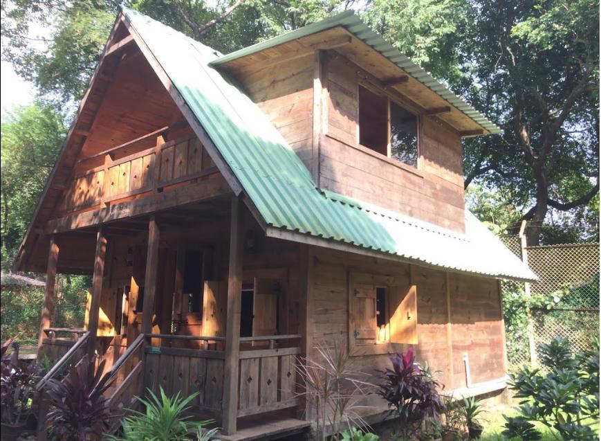 Pine Hut Stay Inside National Park