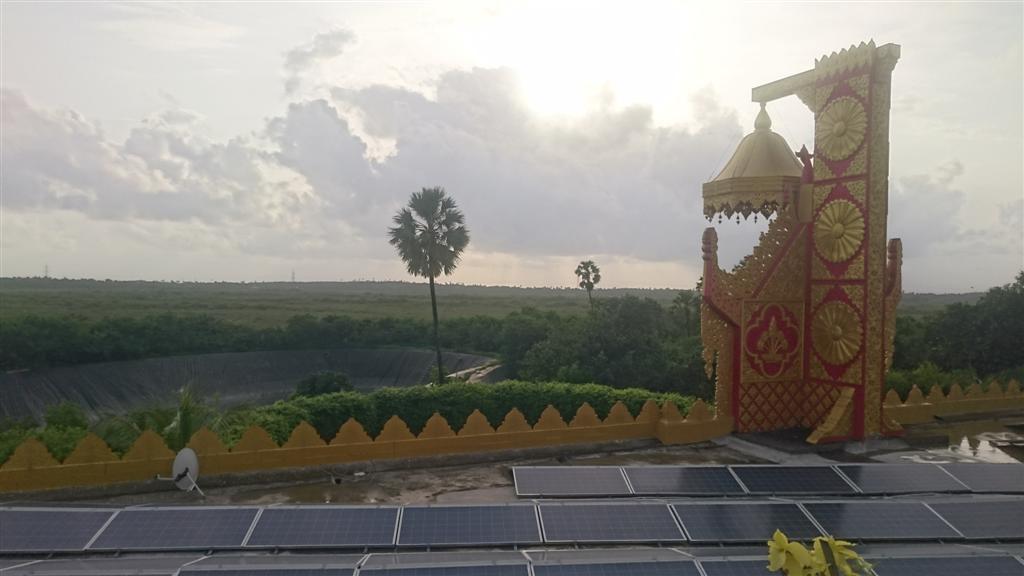 Serenity Around Pagoda