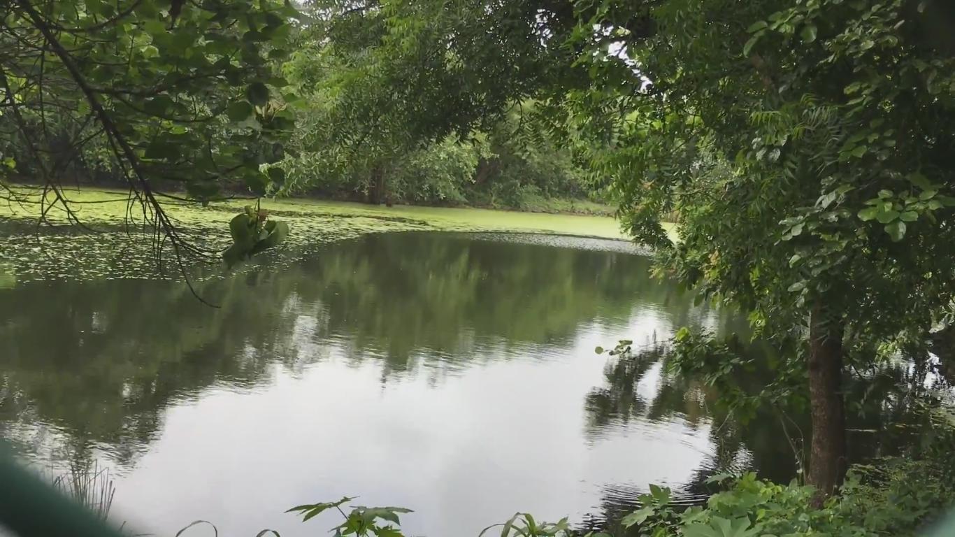 Small Lake Inside MNP