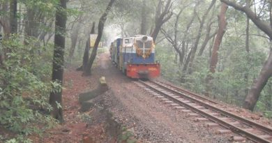 Toy Train Front View
