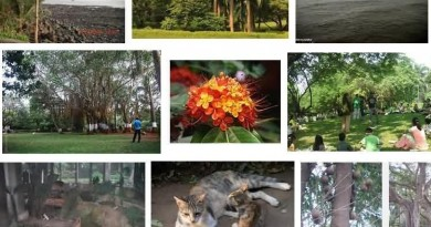 Sagar Upvan Botanical Garden