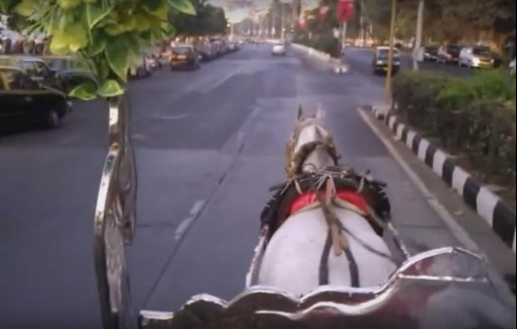 View From Horse Carriage